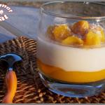 Pana cotta de coco et coulis de mangue