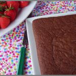 Gâteau au chocolat et à la compote de pomme