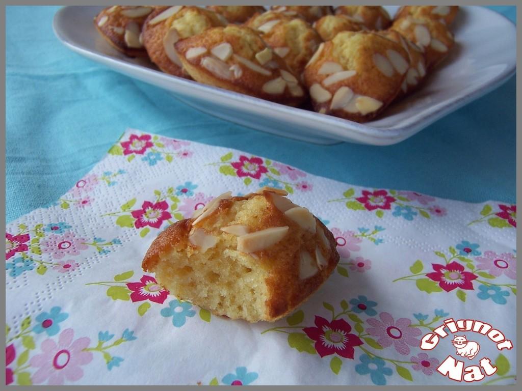 madeleines-miel-de-lavande-amandes-2