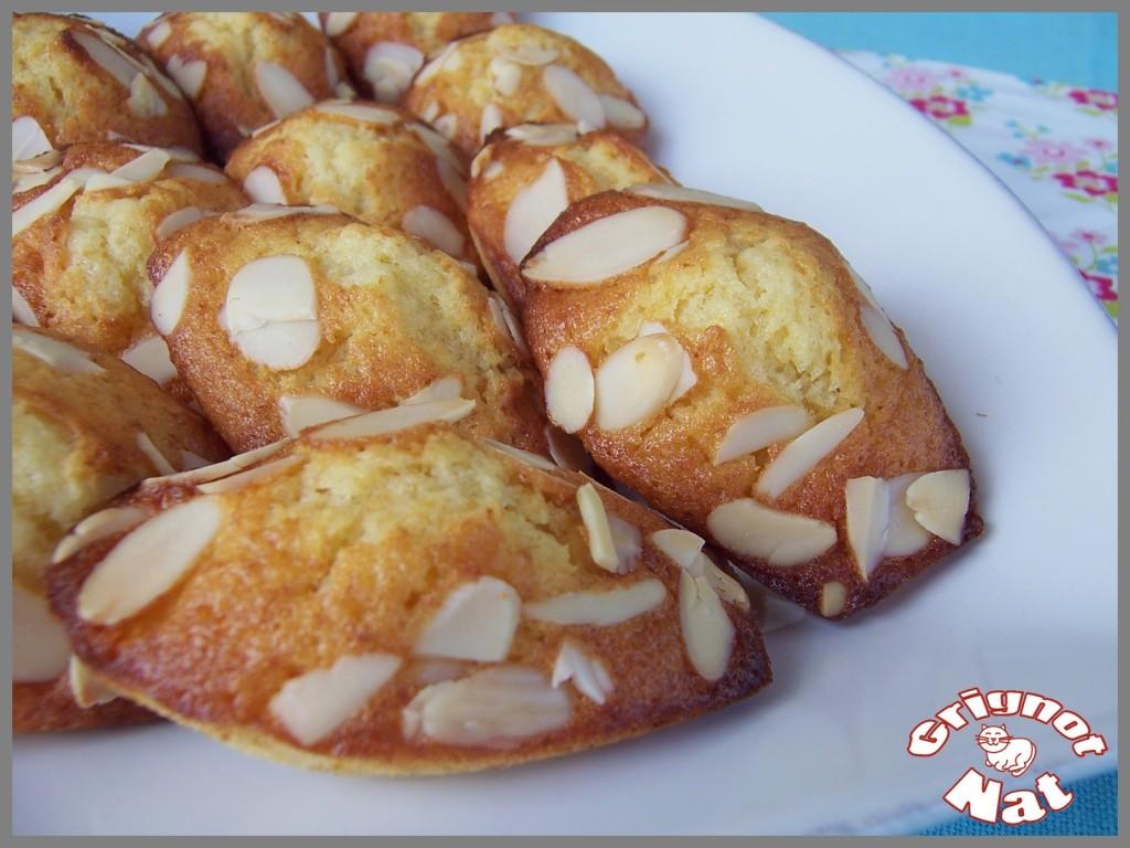 madeleines-miel-de-lavande-amandes-e