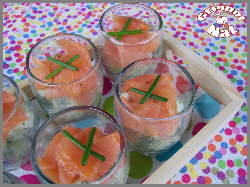 verrines-saumon-concombre-pomme-3