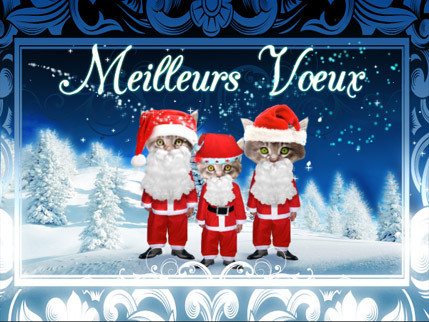Cartes-Chat-Noel