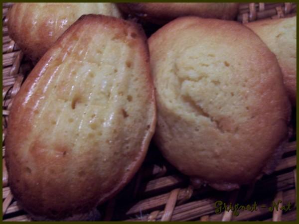 madeleine-au-citron-2