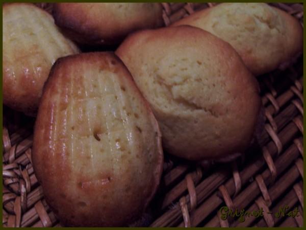 madeleine-au-citron-3