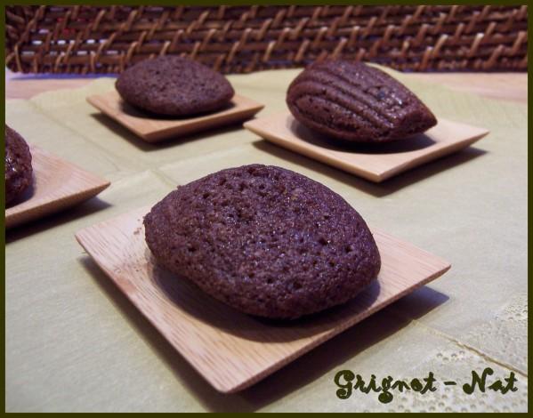 madeleines-au-chocolat-2