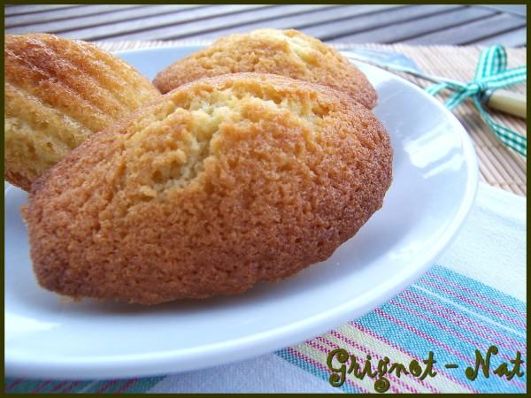 madeleines-noix-de-coco-2
