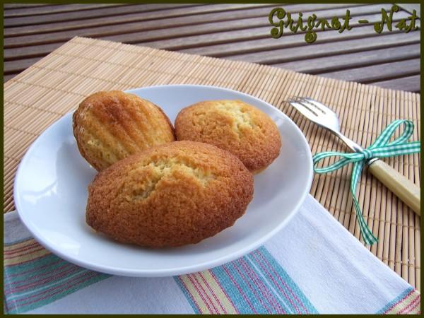 madeleines-noix-de-coco