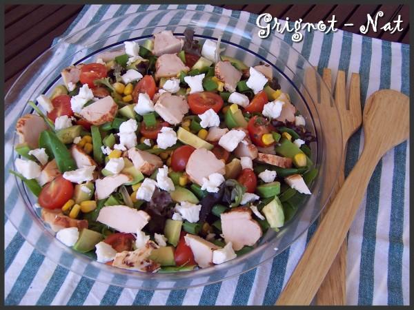 salade-fraicheur-au-poulet-2