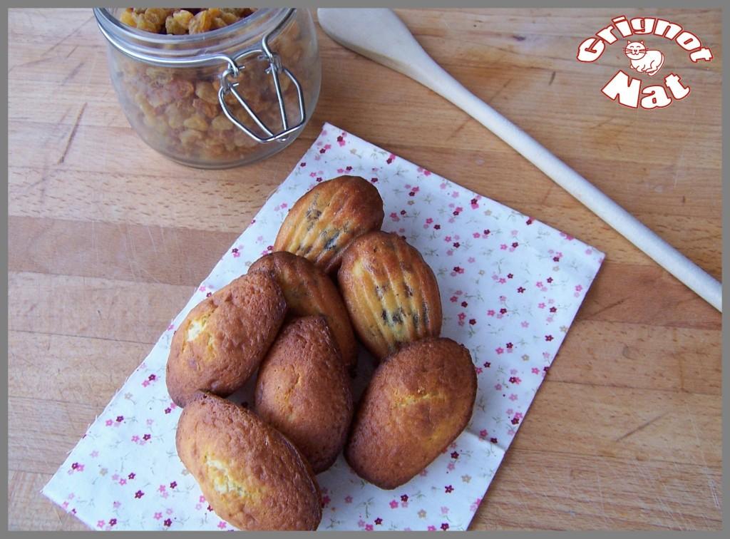 madeleines raisins secs 2
